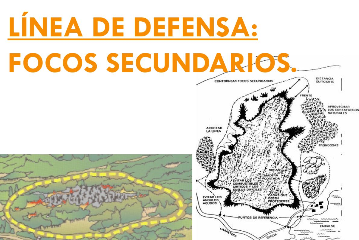 LINEA DE DEFENSA FOCOS SECUNDARIOS