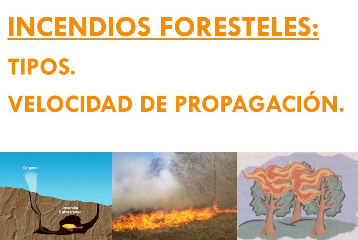 TIPOS INCENDIOS FORESTALES